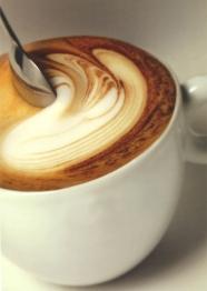 tazzina caffé macchiato schiuma coffeematic alba vendita capsule macchine horeca rancilio hilly